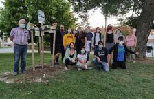 El Palau celebra el Dia del Medi Ambient