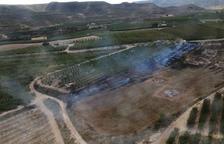 Incendios de vegetación en La Granja y Lleida