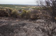 La Donzell d'Urgell registra el primer incendi forestal de l'estiu