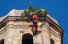 Retiren una figuera del campanar de Sant Martí de Maldà