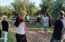 Finalitzen les degustacions d'oli entre oliveres de la comarca
