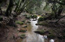 Imatges i poemes de la Segarra