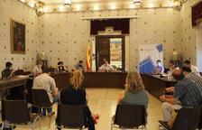 Imagen del pleno del ayuntamiento de La Seu.