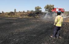 Incendio de vegetación en La Sentiu de Sió