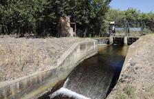 Imagen de una de las acequias del Canal de Pinyana.