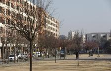 Un 30 per cent de la xarxa de reg dels arbres de la ciutat no funciona