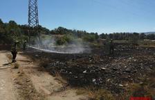Els Bombers sufoquen fins a cinc incendis de vegetació