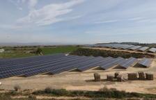 Una instalación reciente de paneles solares en el municipio de Almacelles.