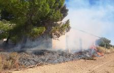 Un incendi calcina 4.000 metres quadrats de vegetació a Penelles