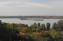 Vaciado parcial para mejorar la calidad del agua del Estany d'Ivars i Vila-sana