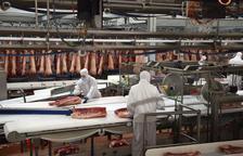 Más de un tercio de los empleados del matadero de Pini son de Lleida