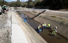 Endesa rescata peces del canal de Balaguer antes de vaciarlo por obras