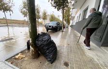 Campanya per eradicar les bosses de brossa tirades als carrers de Cervera