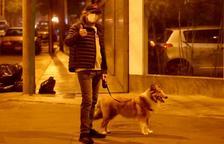 Cop baix als gossos