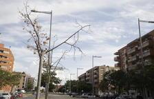 Aval al relleu de l'empresa concessionària de jardineria de Lleida