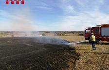 Arden seis hectáreas en un fuego agrícola en Els Plans de Sió