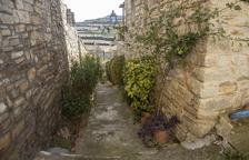 Renoven el carrer de les Flors de Vilagrasseta