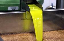 La DOP Les Garrigues confía mantener las ventas de aceite en esta campaña y conseguir nuevos clientes en línea