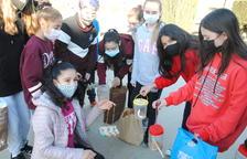 Comederos para las aves en Linyola hechos por los alumnos de El Sitjar