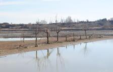 Inicien el procés d'ompliment de l'estany després de sanejar-lo