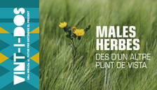 Tot el que podem aprendre de les males herbes, aquest diumenge a 'Vint-i-dos'