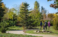 L'Arborètum de Lleida tanca l'any amb més de 5.500 visitants