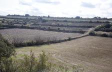 Reviuen un polèmic projecte per acumular tones de llots de depuradores a Verdú