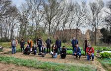 Doce familias cultivarán los huertos urbanos de la capital