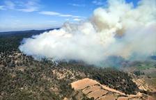 Los Bomberos dan por estabilizado el incendio forestal en la sierra de Senan
