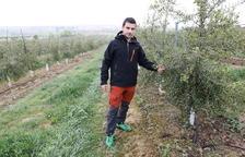 El Garrigues Sud ja té dos-centes hectàrees al banc de terres conreades per joves agricultors