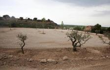 Catorze pobles de l'Urgell tenen una àrea per a autocaravanes
