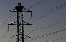 La nova factura de la llum afectarà 86.000 llars lleidatanes