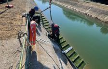 Rampa para evitar que mueran corzos en el canal