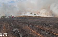 Arden 6,5 hectáreas en Balaguer en el primer fuego de cereal de la temporada