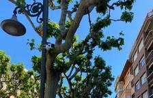Tremp instal·la quatre càmeres en dos punts del municipi