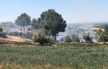 Un fuego calcina 1,5 hectáreas de vegetación agrícola en Soses