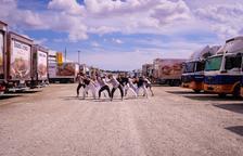 Una de les coreografies de l'Escola de Dansa Montse Esteve, a l'aparcament de bonÀrea.