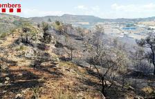 Los Bomberos trabajan en dos incendios de vegetación agrícola en Artesa de Segre y Gratallops