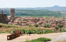 Visitants escolars, ahir a la instal·lació escultòrica de David Bestué a la zona del Castell de Seròs.