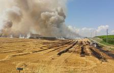 Un incendi calcina deu hectàrees de camps de cereals a Alcarràs