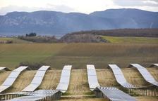 El boom de les renovables anima el mercat de compra de megawatts