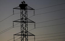 El Govern central aprovarà dijous rebaixar l'IVA de la llum del 21 al 10%