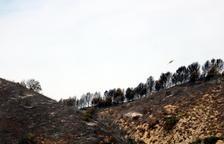 Els Bombers donen per controlat l'incendi d'Alfarràs