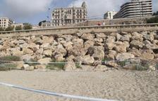 Se necesitan voluntarios para vigilar los huevos de tortuga boba de la playa del Milagro de Tarragona