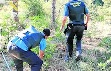 Batuda antidroga a Torrefarrera i Os de Balaguer