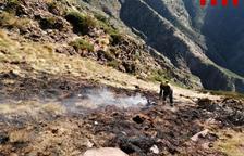 Extinguen el fuego de alta montaña en Alins