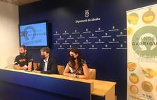 El acto de la presentación de la cooperativa, este miércoles en la Diputación de Lleida.