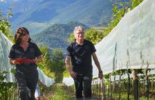 Silvia Gaminde i Javier Güell, propietaris i responsables de Cal Mandrat de Montellà, a la Cerdanya.