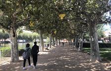 Nuevas técnicas de poda en parques de Les Borges