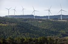 Iberdrola y Endesa 'plantan' la subasta de renovables